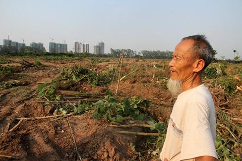 Ecopark, Văn Giang, Hưng Yên, Cưỡng chế, Bùi Huy Thanh