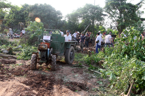 Người dân xã Xuân Quan thu dọn vườn cây cảnh sau vụ cưỡng chế sáng 24/4. Ảnh: Nguyễn Hưng.