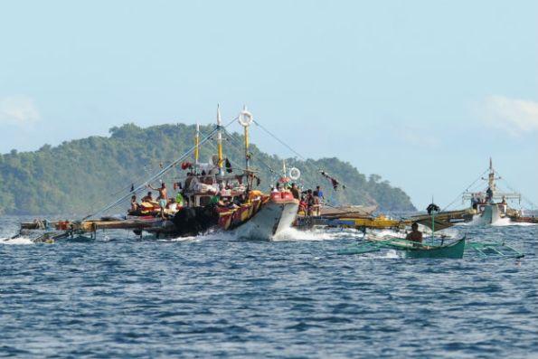 Biển Đông: Câu chuyện về cá