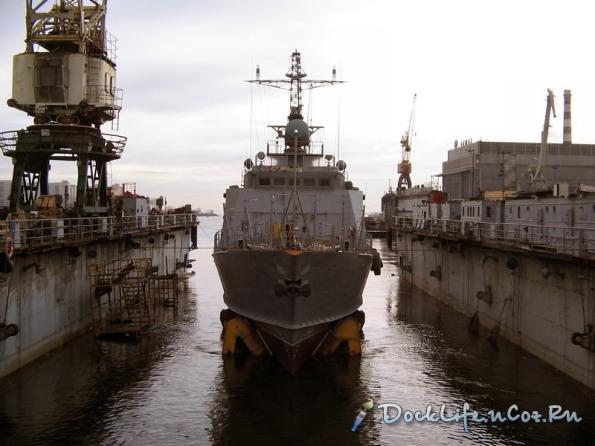 Cận cảnh tàu Svetlyak nhìn từ phía trước khi chưa lắp hệ thống vũ khí