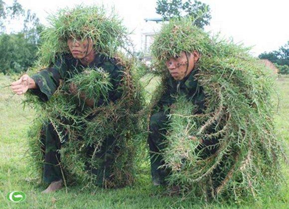 Ngụy trang bằng cỏ